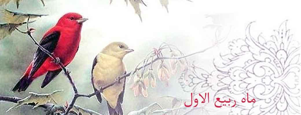 اعمال و فضیلت شب ها و روزهای ماه ربیع الاول
